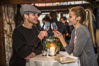 Bratislava wine tour