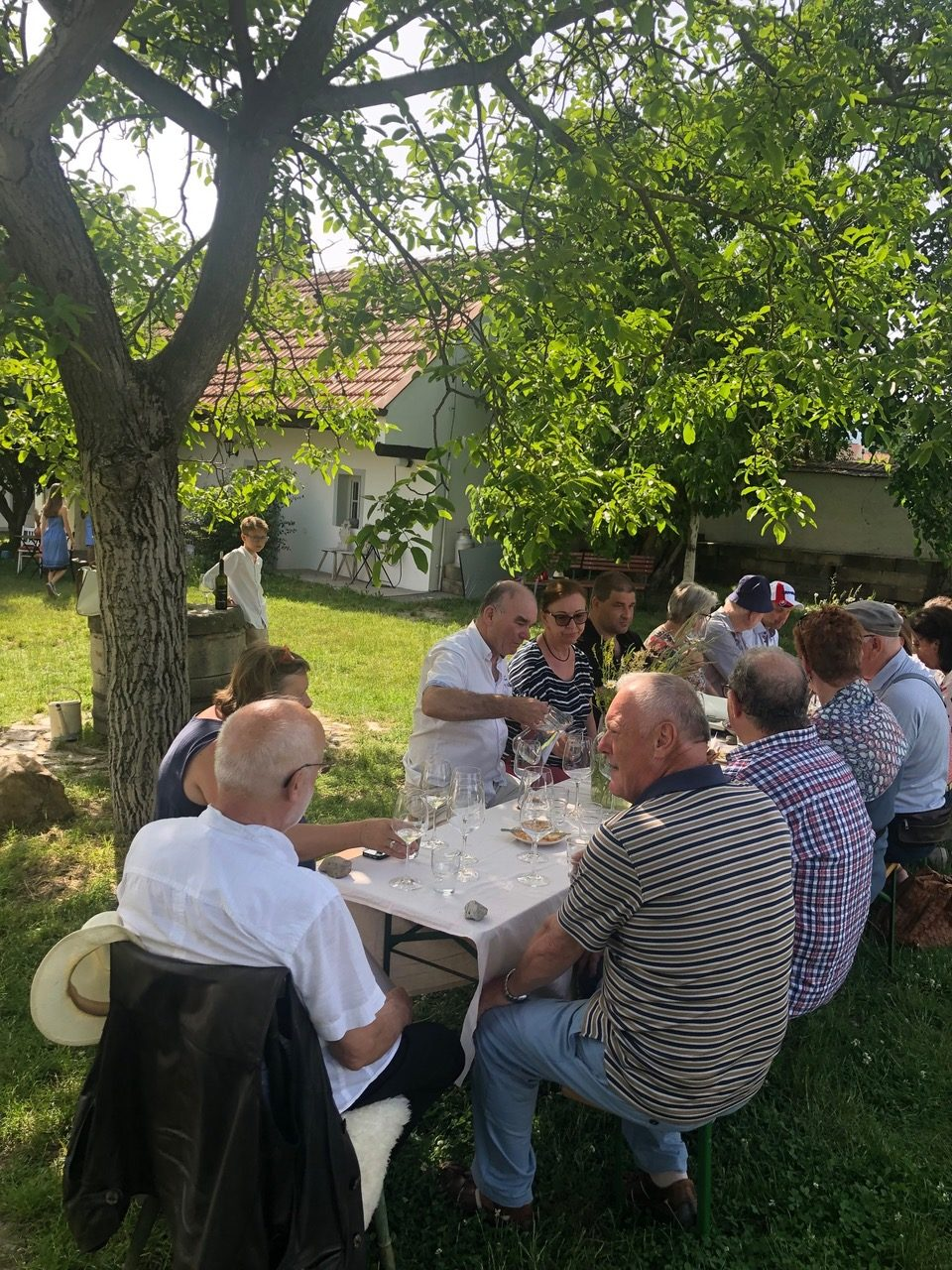 Wines of Slovakia