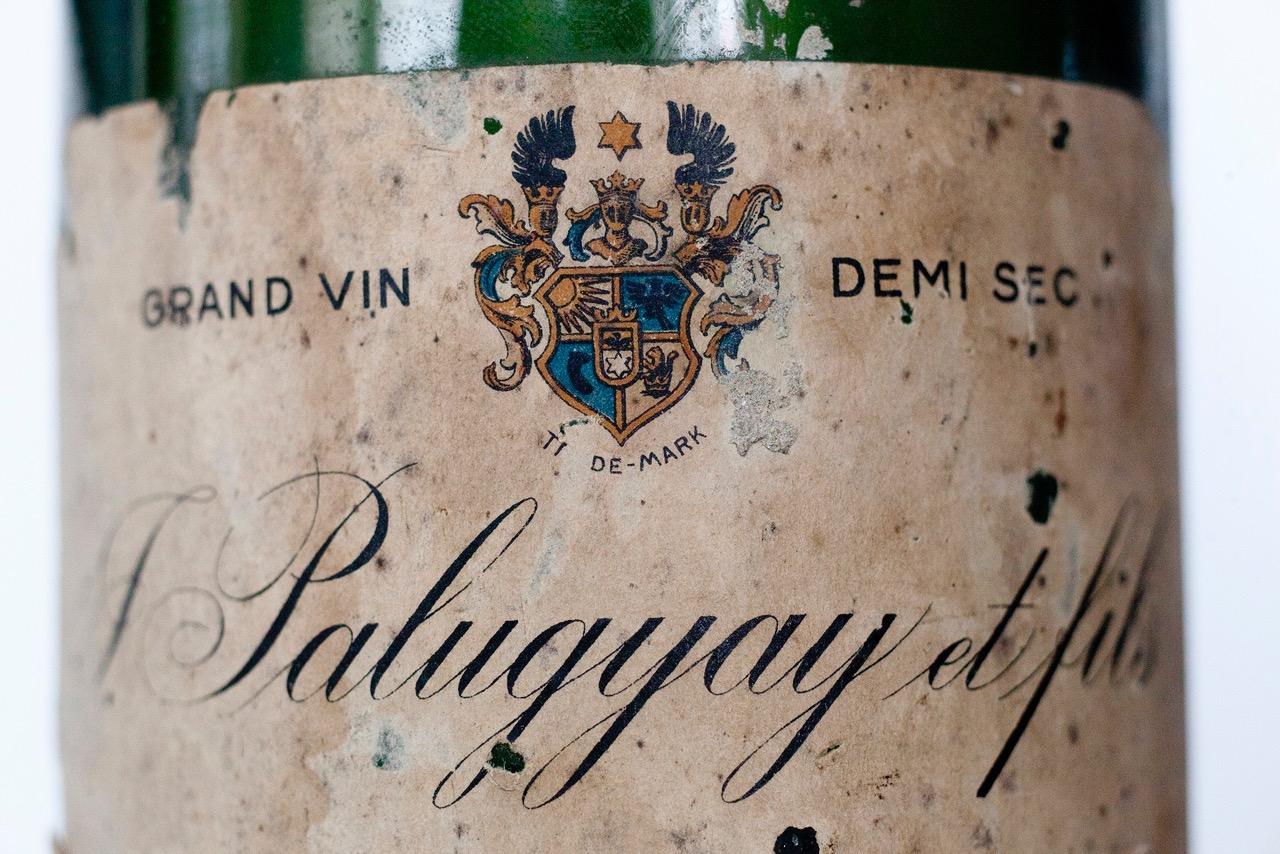 Palugyay Sekt - Wine in Slovakia