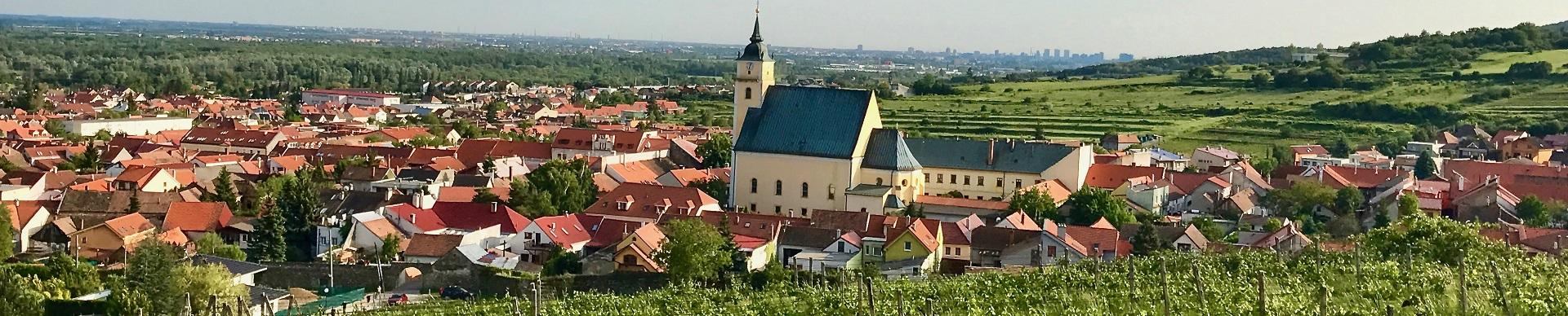 Weinbau der Slowakei